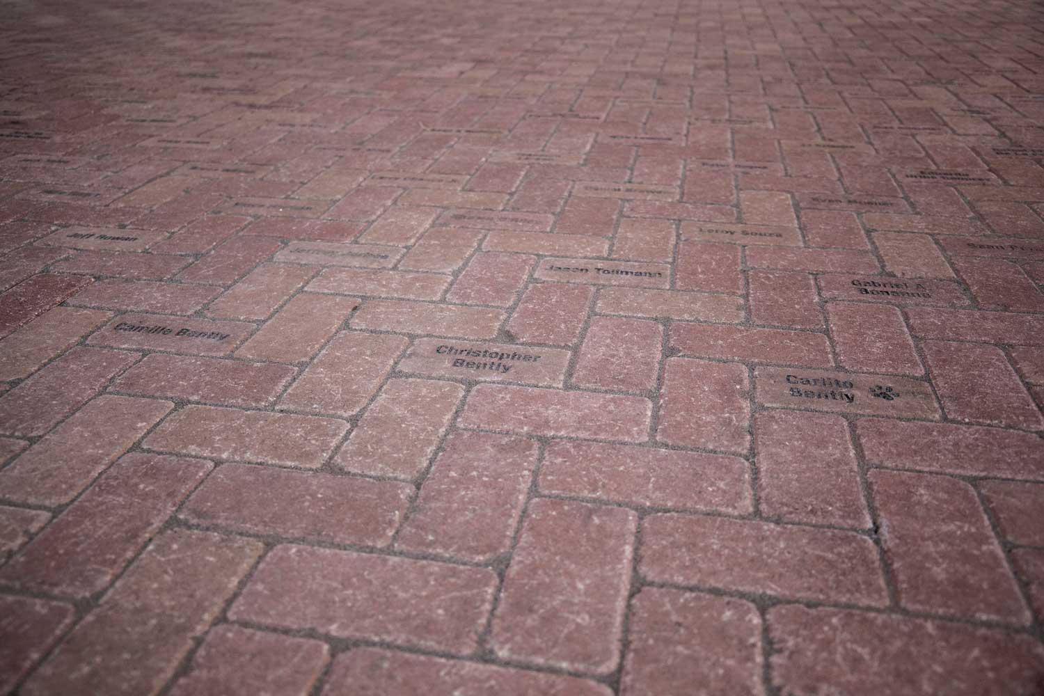 The bricks on our campus, inscribed with the names of those who brought it to fruition.